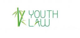 Logo Công ty Luật TNHH MTV Trẻ