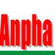 Logo Tập Đoàn Dầu Khí Anpha Petrol