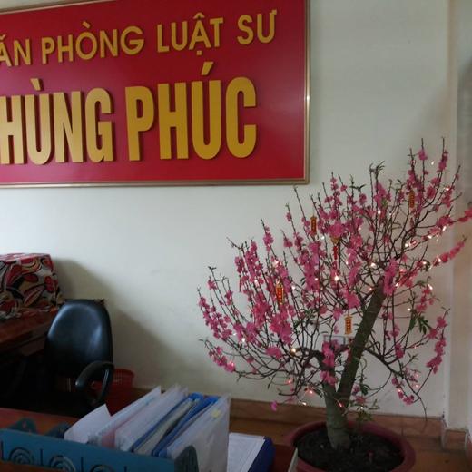Hình ảnh Văn phòng luật sư Hùng Phúc