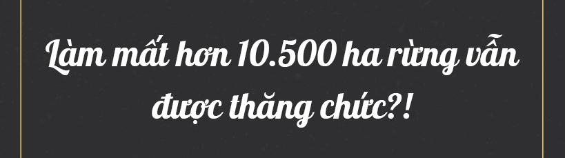 Ðể mất hơn 10.500 ha rừng vẫn được thăng chức